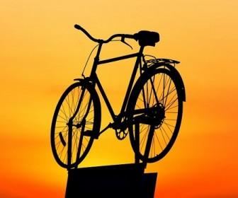 sennik Rower kolarski